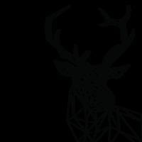 Geometric Animals V2 - Claire